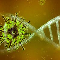 La covid-19 nos revela una nueva inmunodeficiencia